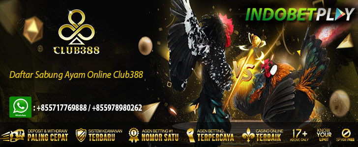 daftar club388, daftar sabung ayam online club388, daftar sabung ayam online, daftar sabung ayam club388, daftar sabung ayam online sv388