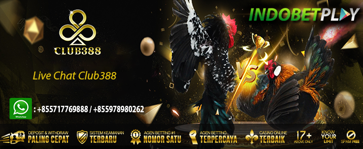 live chat club388, customer service club388, cs club388, agen club388 indonesia, live chat club388 indonesia, live chat club388 online, live chat club388 myp508